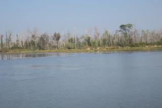 近くの湖.JPG